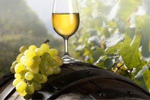 Szőlész-borász képzés