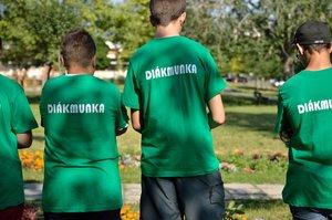 Diákmunka Leányváron, Vörösváron