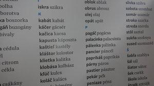 Szlovák-magyar közös szókincs