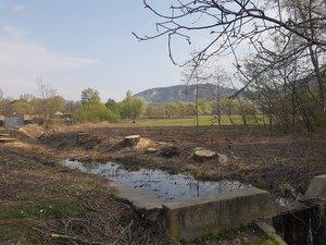 Csurgó: kivágták a veszélyes fákat