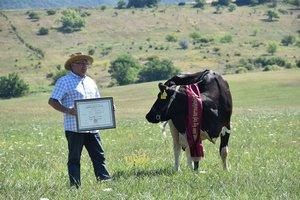 Négy kamion tej Ceciltől és Rebekától - kitüntették a Tejút Kft-t