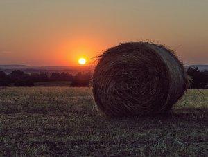 Őstermelőknek, gazdáknak: tájékoztató a jövő évi támogatásokról