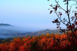 A kesztölci reggeli fény titkai - Lekli Szabolcs fényképei