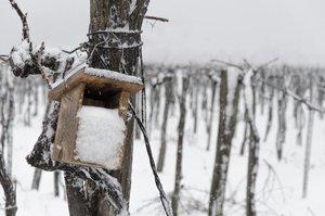 Újabb havazás a hétvégén - webkamerák
