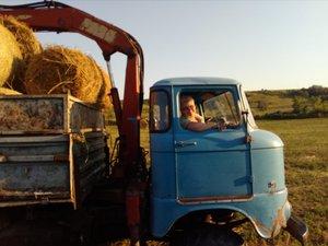 Kati néni tanyáján kisborjú született