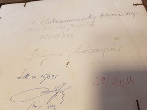 A kép hátlapján felirat erősíti meg, Herczmanszky Alajost és feleségét látjuk.