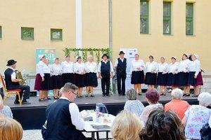 Nemzetiségi fesztivál Dorogon